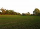 Letzte Sonnenstrahlen am Steinbruch - 08.10.2007