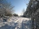 Hintertannen im Schnee